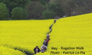 Rogation walk and tea